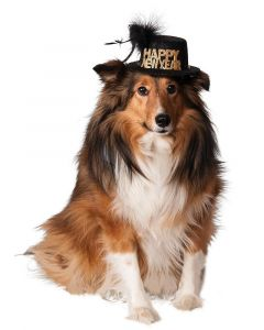 Happy New Year Pet Hat Costume Accessory